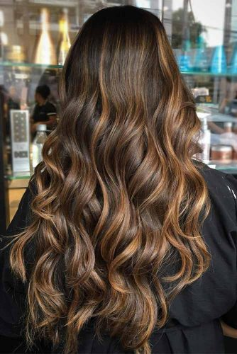 Chocolate Brown Hair with Highlights picture2