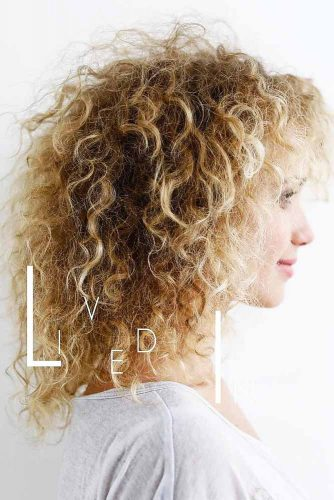 Cute Curly Hairstyles picture 1