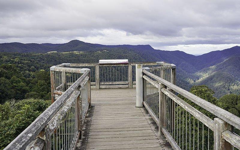 Skywalk At Dorrigo National Park