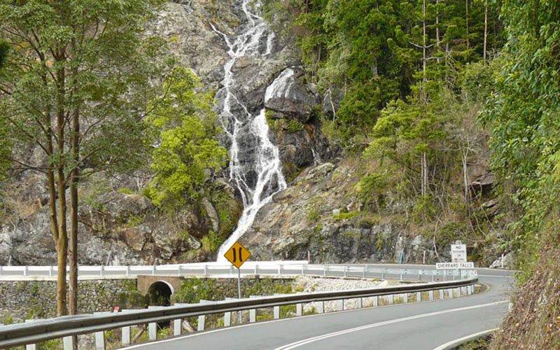 Waterwall Way Scenic Drive, Dorrigo National Park